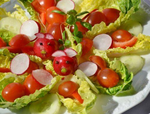 Nie wieder traurige Salate